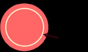 lille cirkel