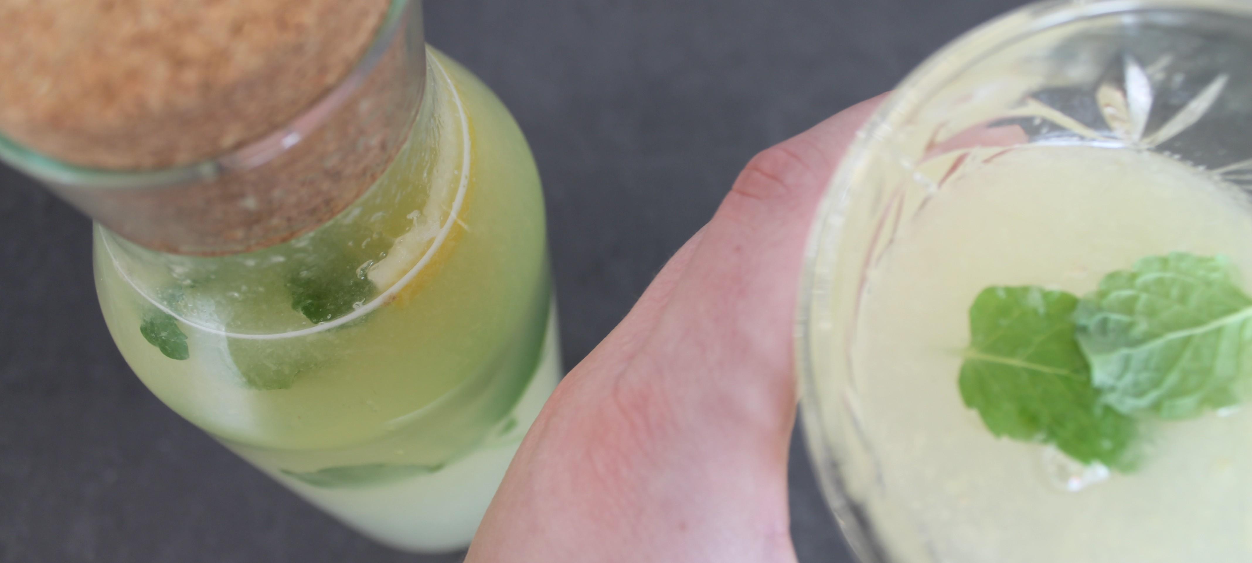 Nem og frisk hjemmelavet Ginger Ale/Lemonade